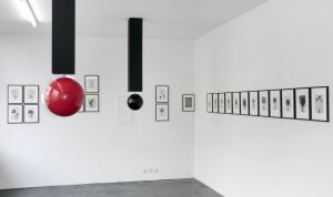 Martin Neumaier / IMMER